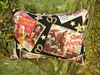 Roy_rogers_pillow